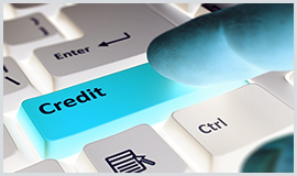Credit Collection Agency